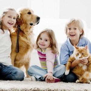 Дети и домашние животные на ковре